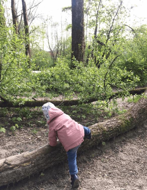mini-and-me-salzburg-mit-kind-gaensebluemchen-und-sonnenschein-leben-mit-kindern-ausflugstipps-sightseeing-koenigsseeache3