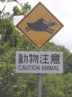warnschild in japan