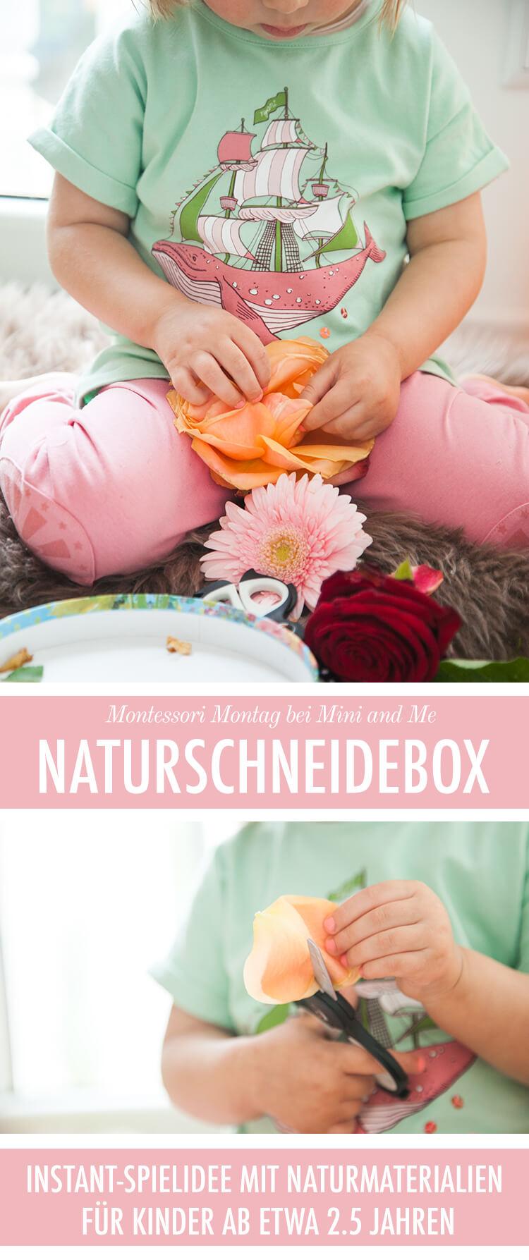 Naturschneidebox: eine Montessori inspirierte Instant-Spielidee, die Spaß macht und die kindliche Feinmotorik und Konzentration fördert