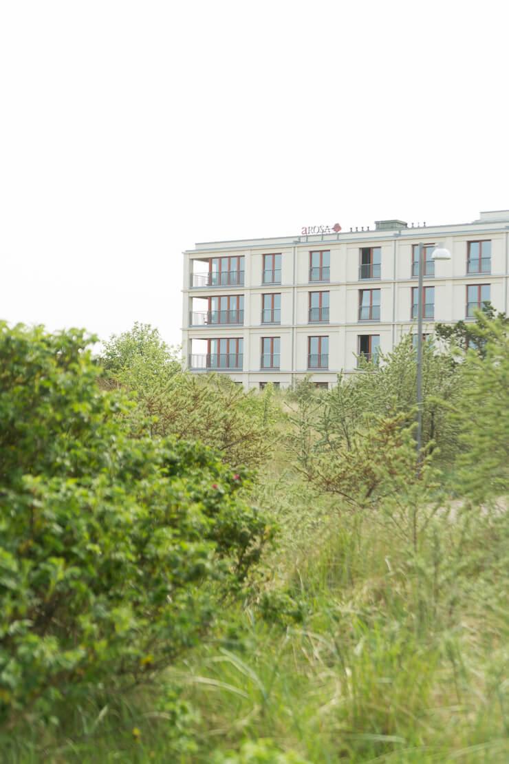 Sylt mit Kind: 3 Tipps für eine schöne Zeit auf dieser verträumten, exklusiven und windigen Insel im Norden Deutschlands: Hotel Arosa, Robbenbänke und Ausflug auf den Ellenbogen