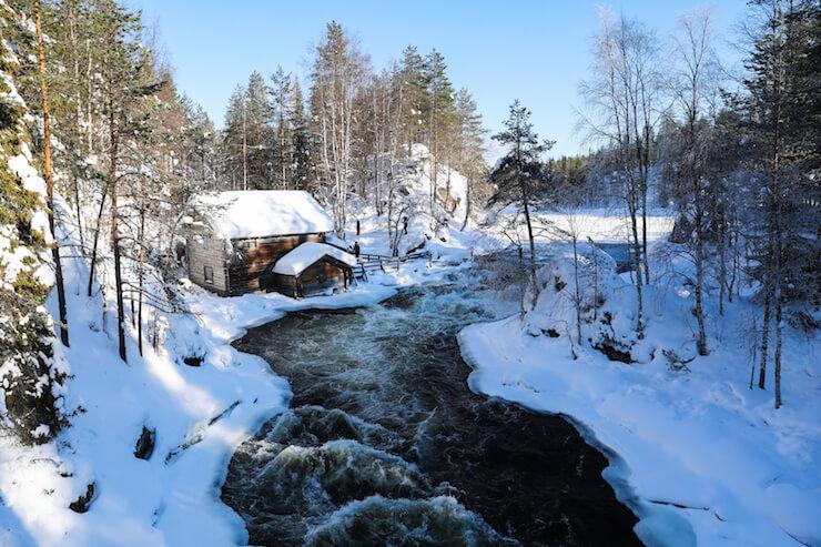 Lappland mit Kindern erleben: Der Reiseguide für dein einzigartiges Abenteuer in Ruka-Kuusamo