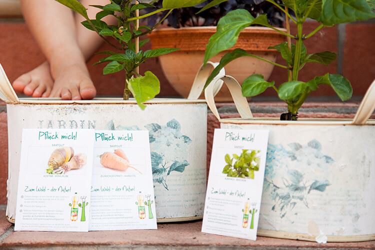 Urban Gardening mit Kindern (Mini and Me, Achtsamkeit mit Kindern, Gärtnern, Artenvielfalt, Arche Noah, Grannys, Beziehung statt Erziehung) #achtsamkeitmitkindern #urbangardeningmitkindern