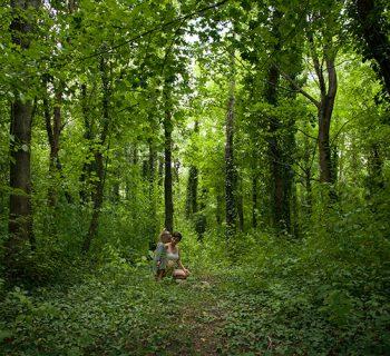 Tankstelle Natur: Warum unsere Kinder den Kontakt zur Natur unbedingt bewahren müssen und wie wir zurückgewinnen, was wir verloren haben (mit Achtsamkeitsübungen)