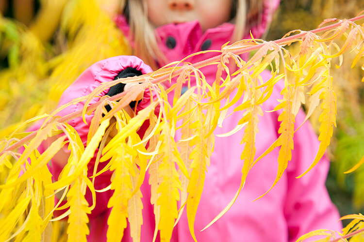 Wir feiern den Herbst: 10 geniale und abwechslungsreiche Ideen für eine wundervolle Zeit im Freien, wenn es kälter wird (Familie, Leben mit Kindern, Mini and Me, Reima, Outdoor, Outdoor Bekleidung, Kinder begleiten, Zeit im Freien, Draussen, Bewusster Leben)