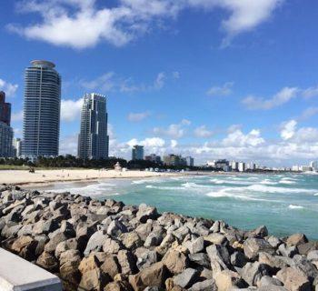 """Im Ausland leben mit Kindern: Joana über Sonne, Schatten und Kunst in Miami im """"Sunshine State"""" Florida"""